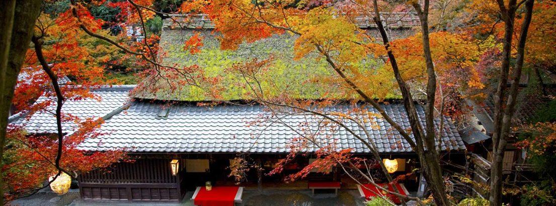 Autumn in Hiranoya